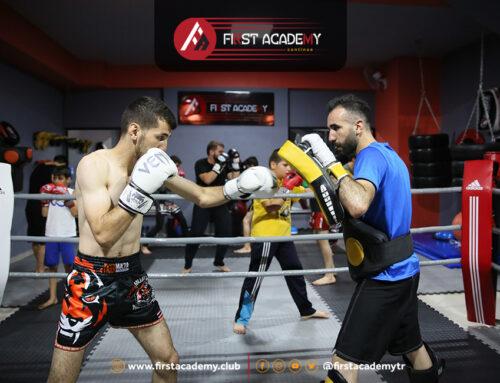 الفنون والالعاب القتالية في تركيا